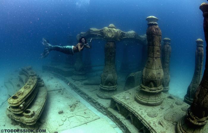 Neptune Memorial Reef
